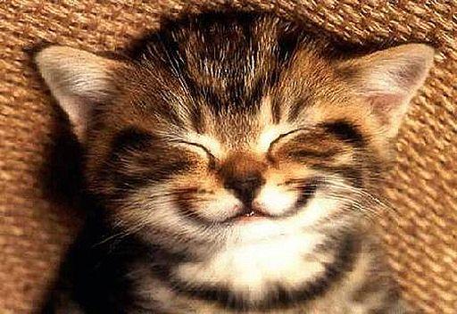 ابتسم ورد ابتسامة شخص ما لك